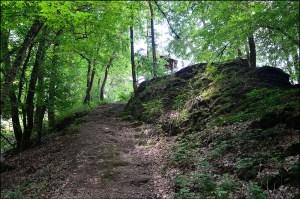 Wanderung oberhalb Alf (9)