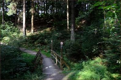 D2_Über_Berg_und_Tal (20)
