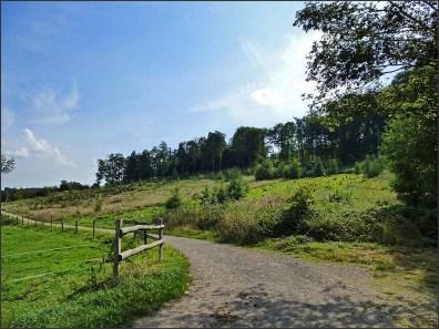 Felderbachtal (17)