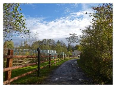 https://fotografischereisenundwanderungen.com/einmal-kurz-koln-besuchen-naturlich-das-grune-koln/