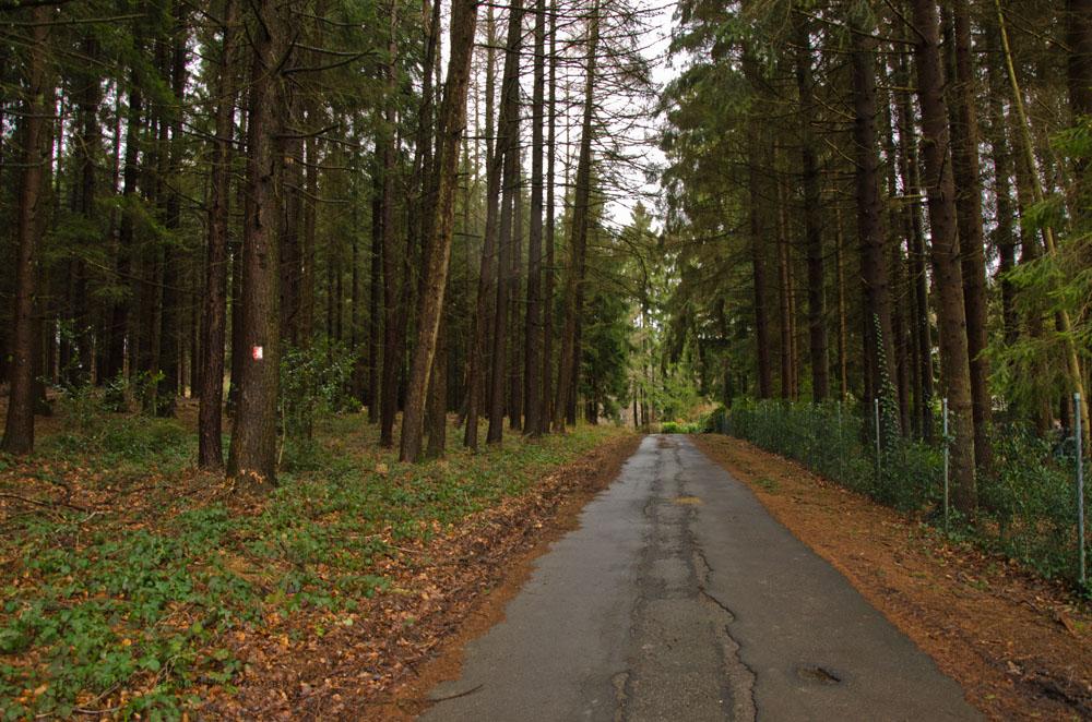 Fachwerkweg_Streifzug_B (20)