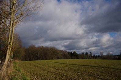 Marienweg_Erlebnisweg_Sieg (2)