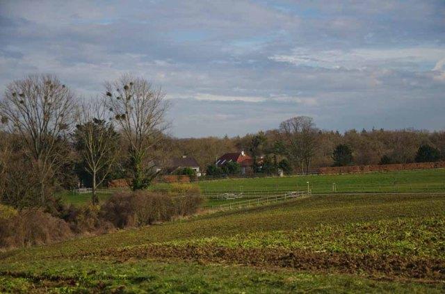 ApolinarisSchleife (38)