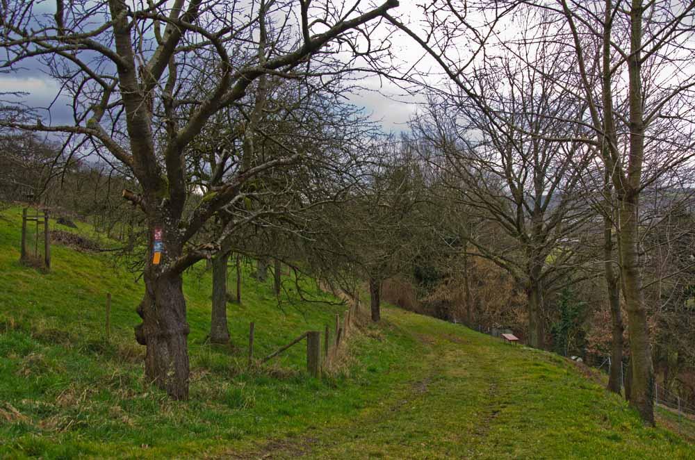 Kulturlandweg (5)