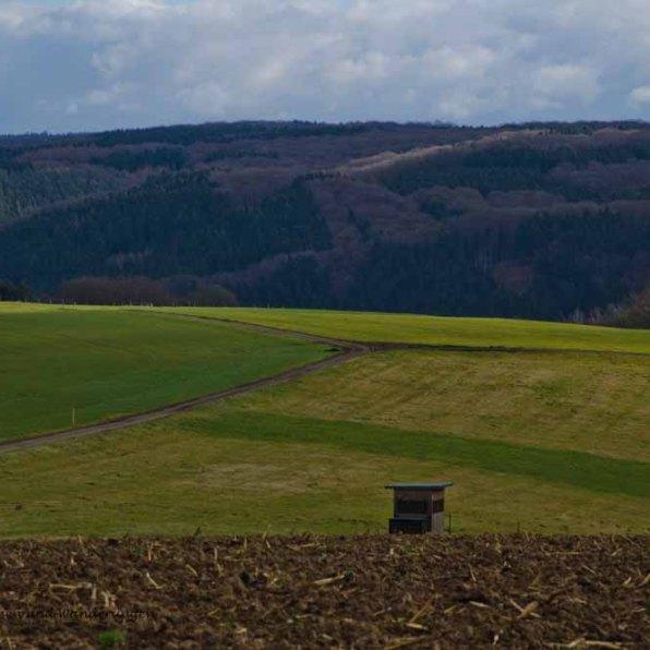 KulturlandwegSieg (163)