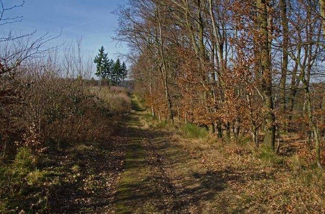 Oberes_Baybachtal (136)