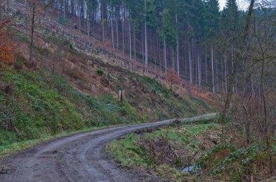 Pulvermuehlenweg (101)