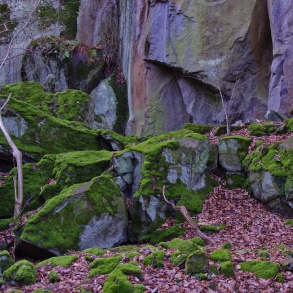 Siebengebirge - Der Weilberg
