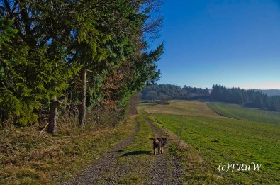 traumpfadwanderather-56