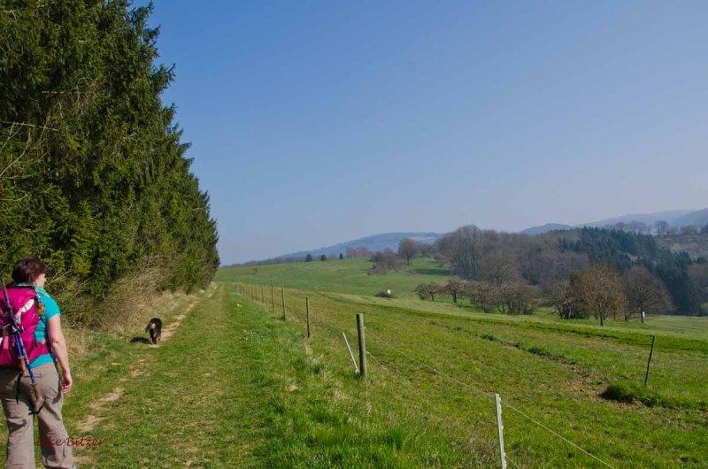 Hatzenport_Lehmen (25)
