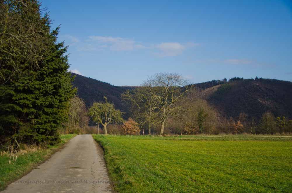 Traumschleifen_Rheingold_Fuenfseenblick (161)