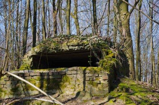 Um die Wiehler Tropfsteinhöhle (30)
