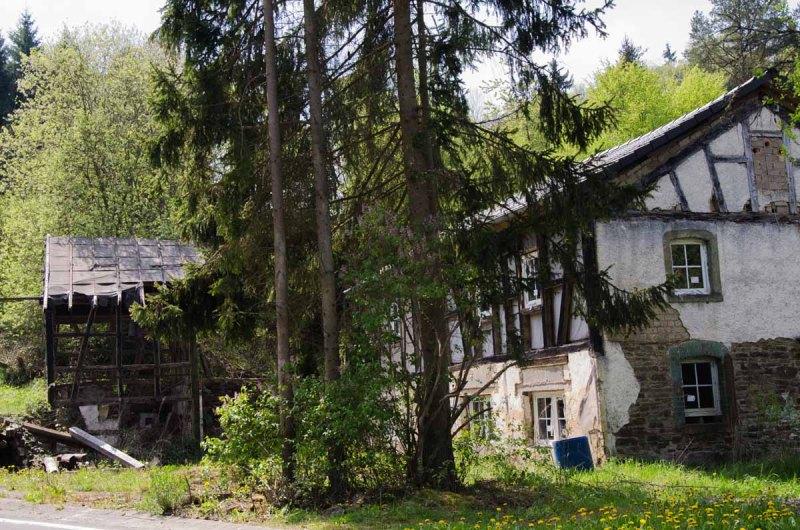 HümmelPitscheidArmutsbachtal_0187