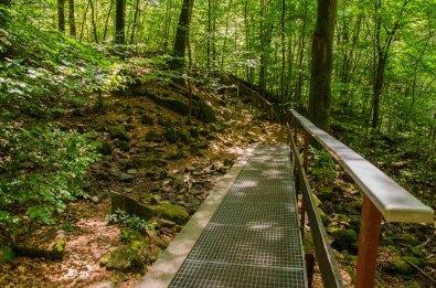 Links außen ist ein Holzsteg, der für Spike gut begehbar war.