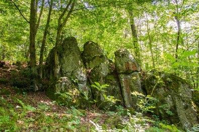 Wandern_in_und_um_die_Holzbachschlucht_0228