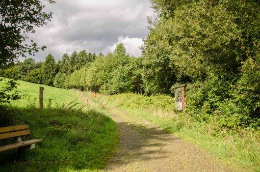 Kraeuterweg_09 Aug 2014_0056