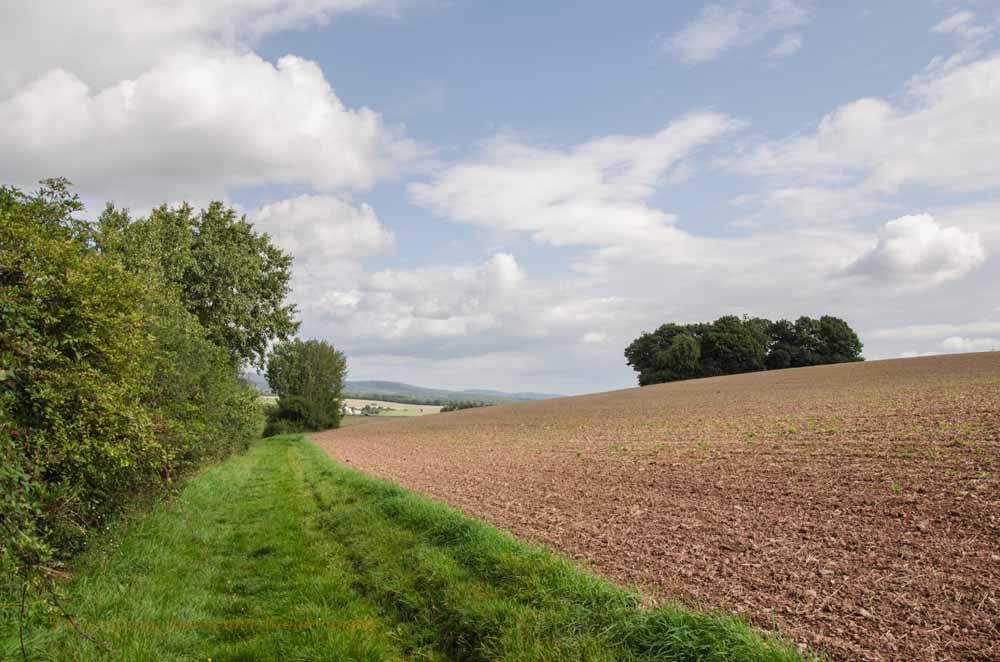 Ein wenig eintönig wandern wir nun an den kahlen Feldern entlang. Das wird im Frühjahr und Sommer sicherlich angenehmer sein.