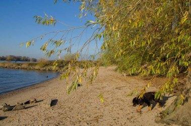 Strandidylle, deshalb auch Himmelgeister Strand