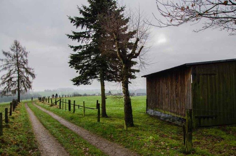 Boellweg_0038
