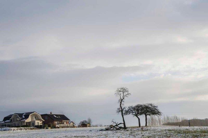 Siebengebirge Komper Heide_0015
