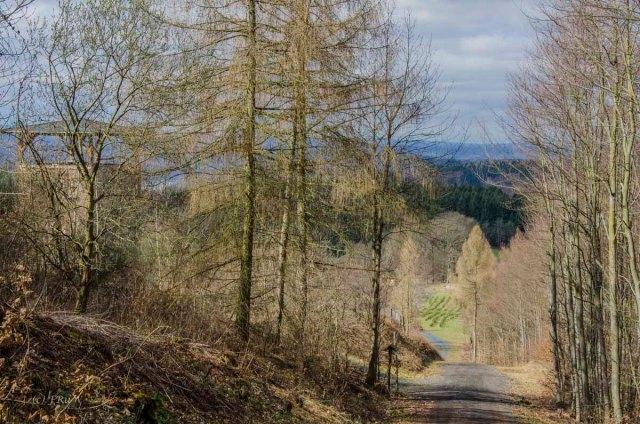 Limesweg_0120