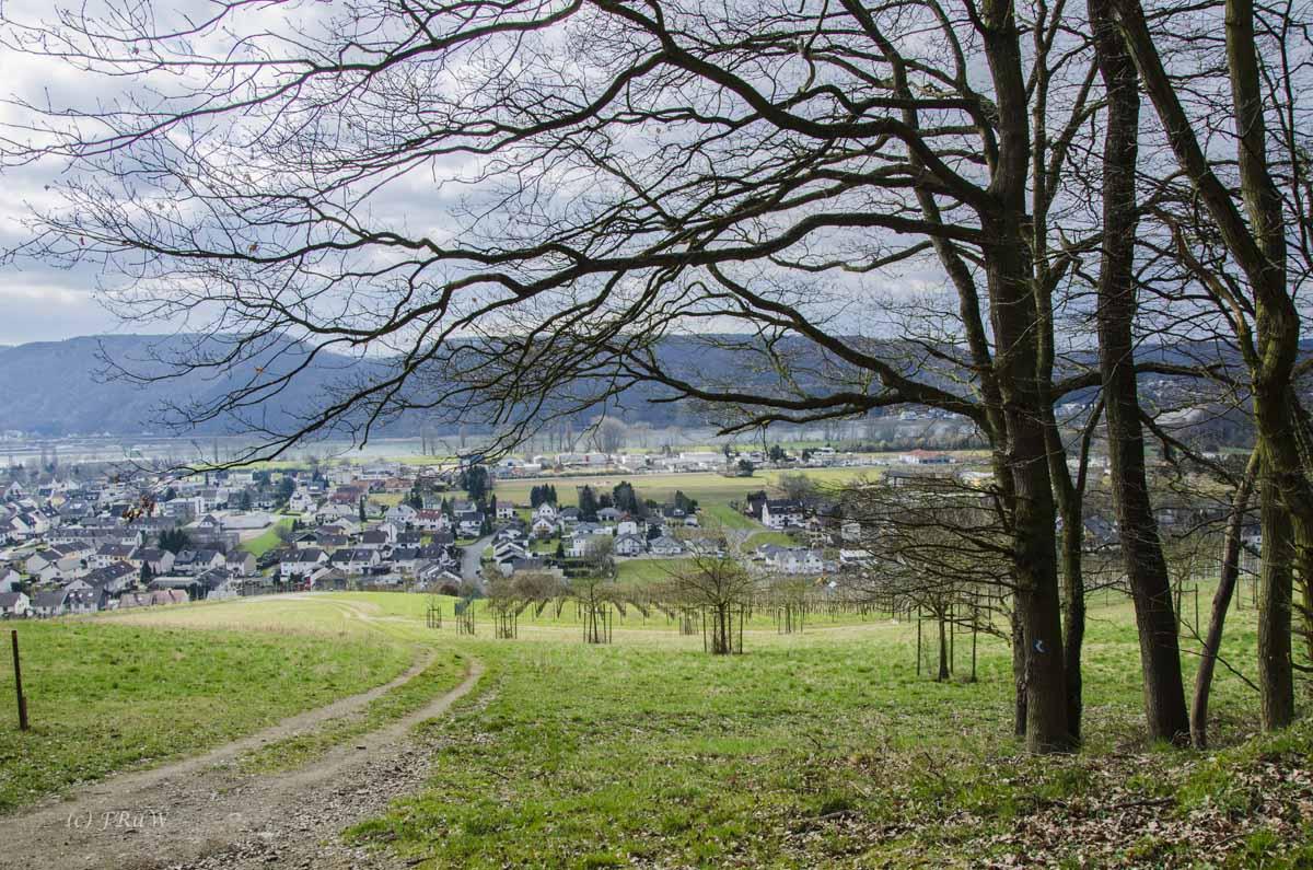 Limesweg_0242