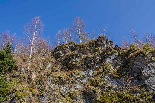 Monschau - Höfen - Rur - Perlenbachtalsperre_0900