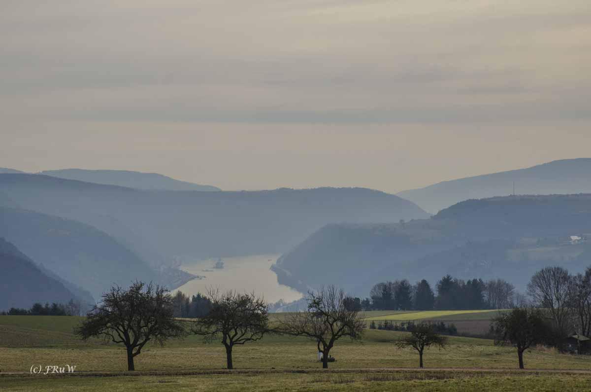 Im Morgendust auf den Rhein schauen - Zwischen Burg Rheinfels und Günderodehaus