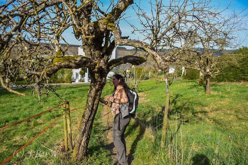Mehringer Schweiz_Tag 1 (251)