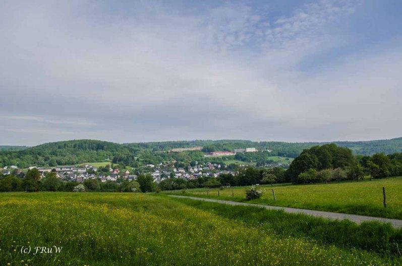 Greifensteinwanderung_0117 - Kopie