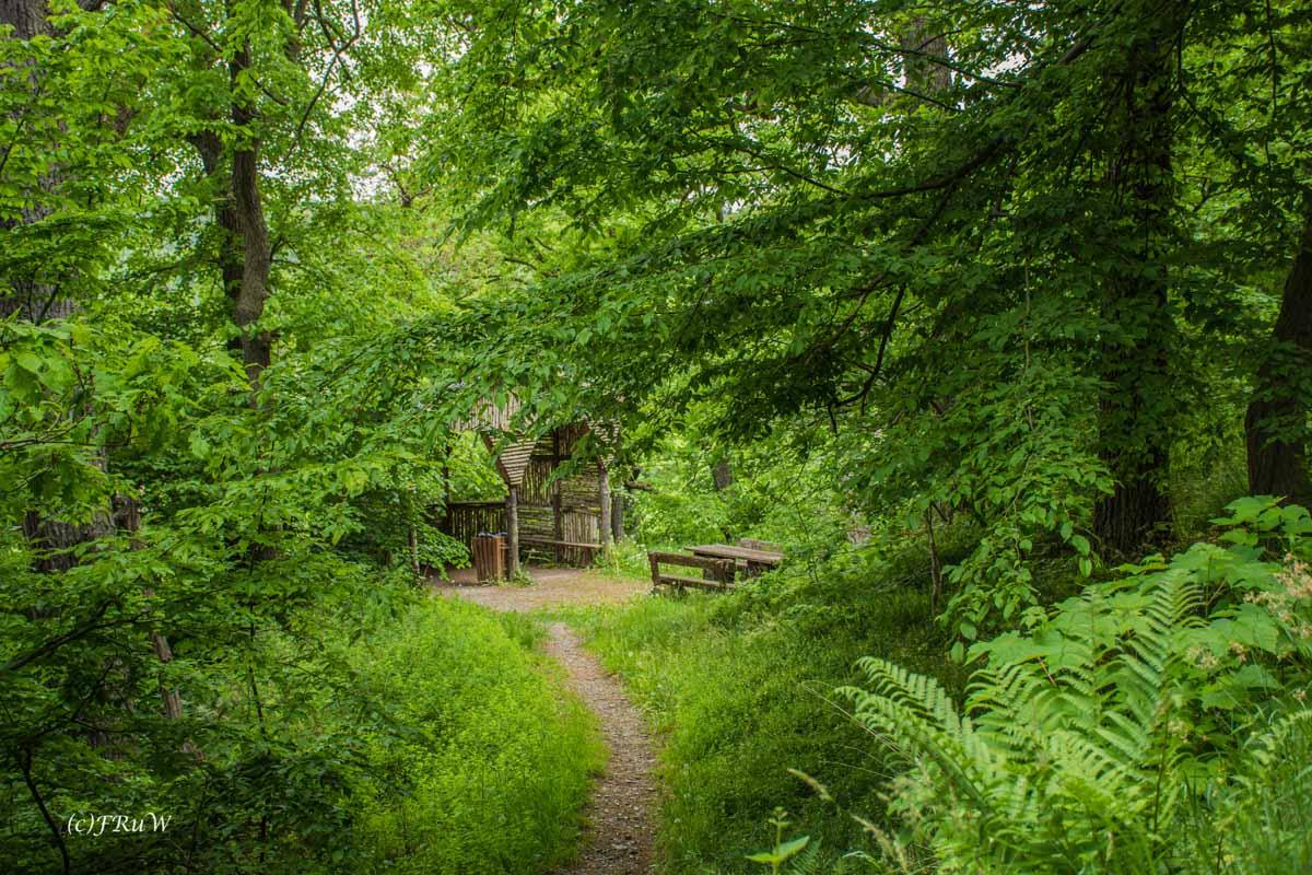 Urlaub Harz 2015_0023