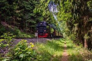 Urlaub Harz 2015_0160