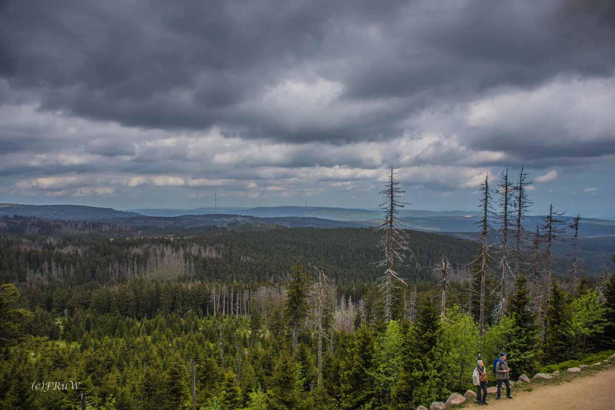 Urlaub Harz 2015_0334