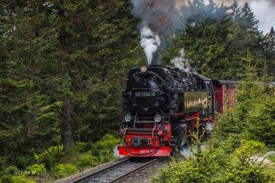 Die schwarze Brockenbahn schnauft den Berg hoch