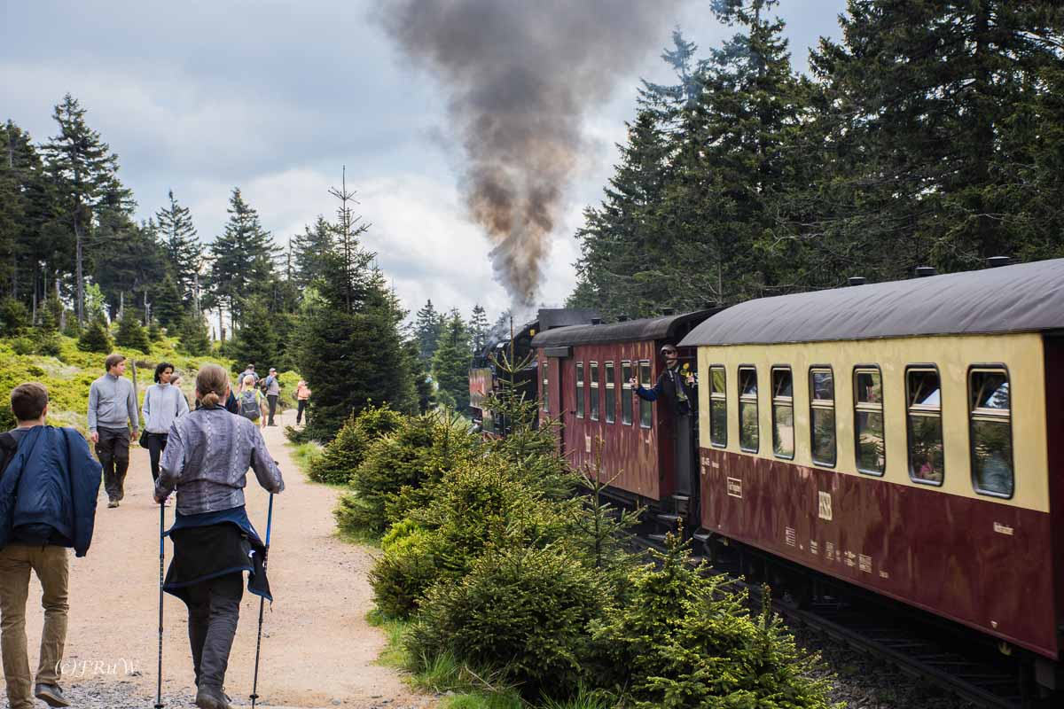 Urlaub Harz 2015_0387