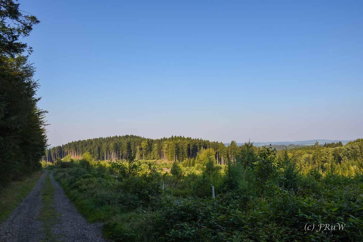 Wacholderweg_0039