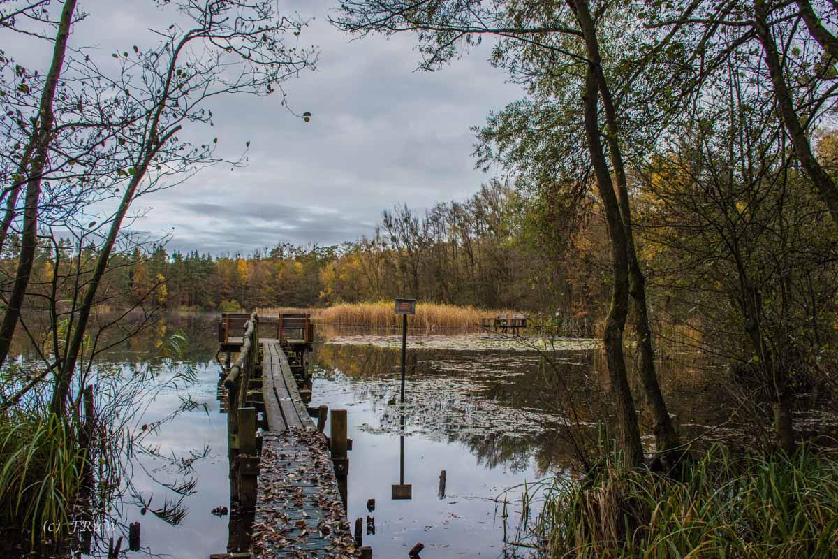 An den Brühler Seen