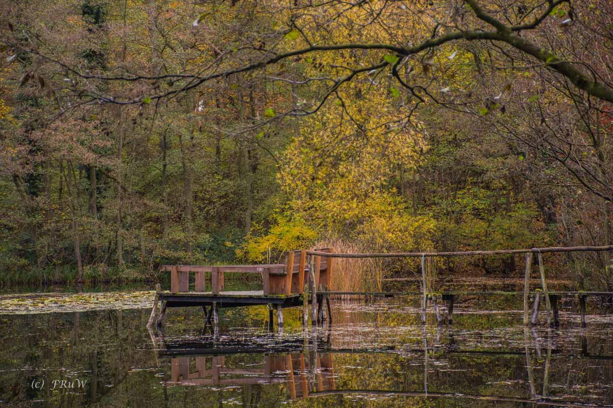 Brühler Seen (31)