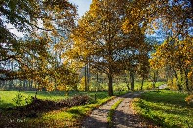 Zauberhafte Elfringhauser Schweiz - Wandern und dann zum Berger Hof