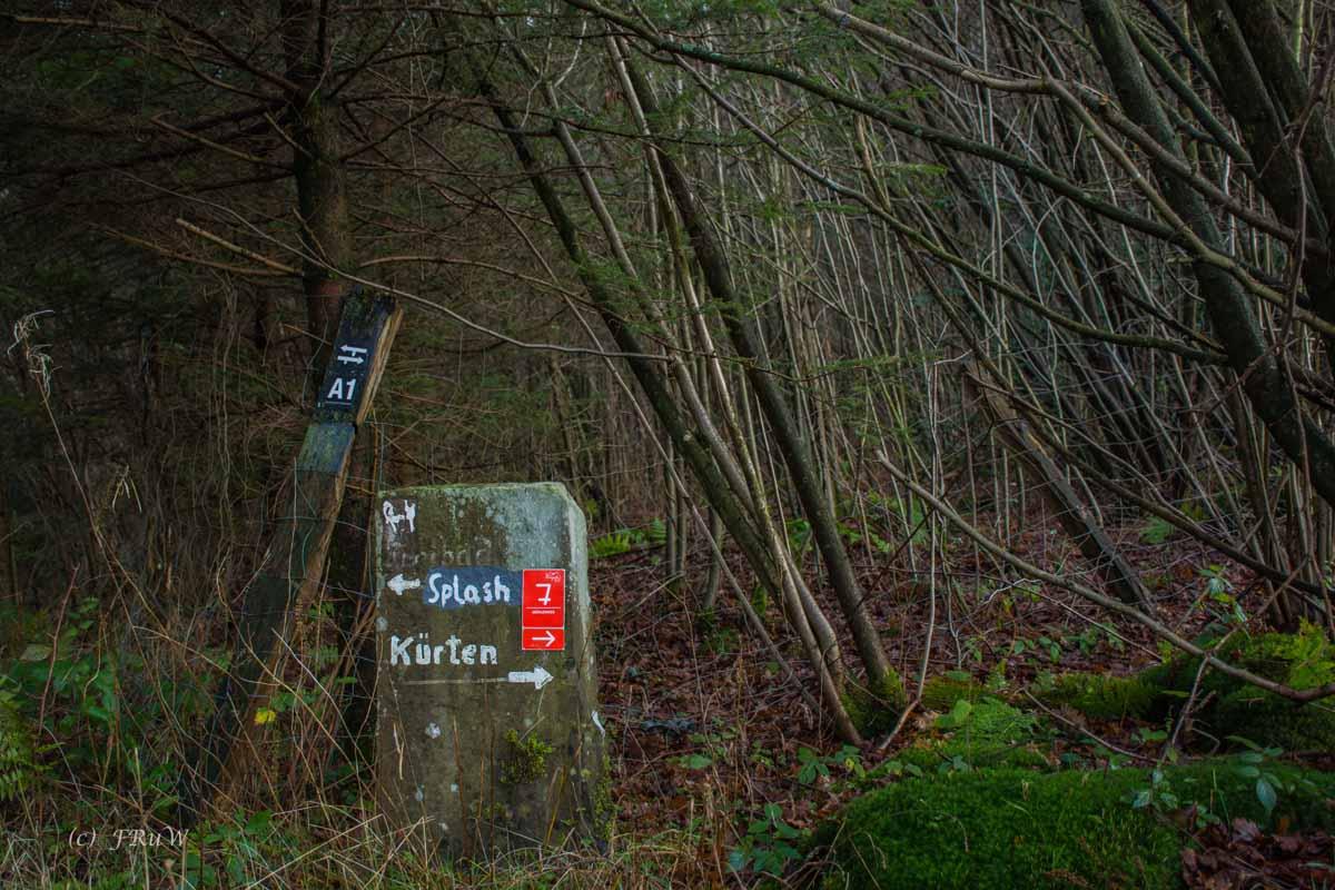 Muehlenweg (137)