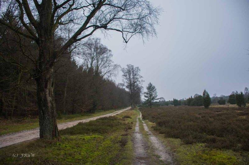 Sellhorn_Totengrund (114)