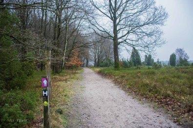 Sellhorn_Totengrund (147)