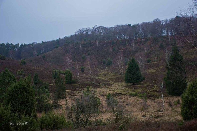 Sellhorn_Totengrund (41)