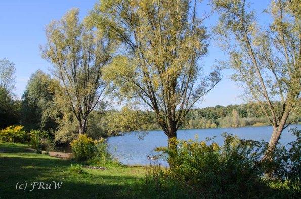 Herrliche Frühjahrsstimmung am Höhenfeldersee