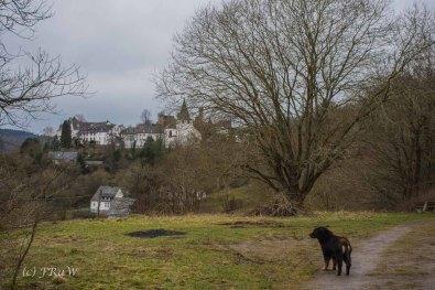 Blick auf Kronenburg