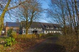Waldmythenweg (11)