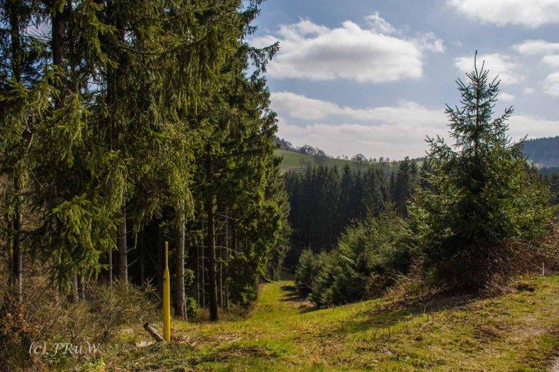 Wildenburger Land (108)