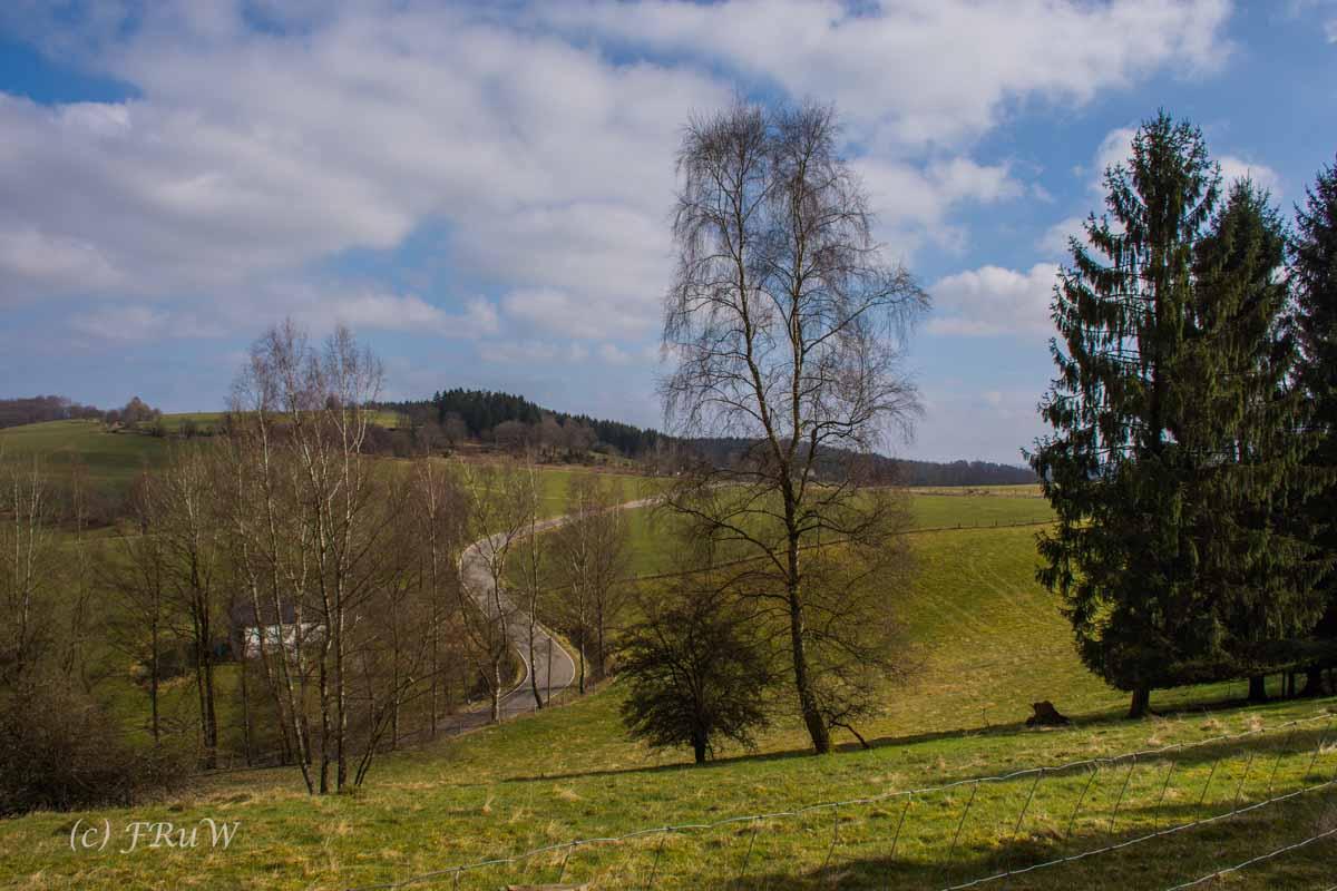 Wildenburger Land (31)