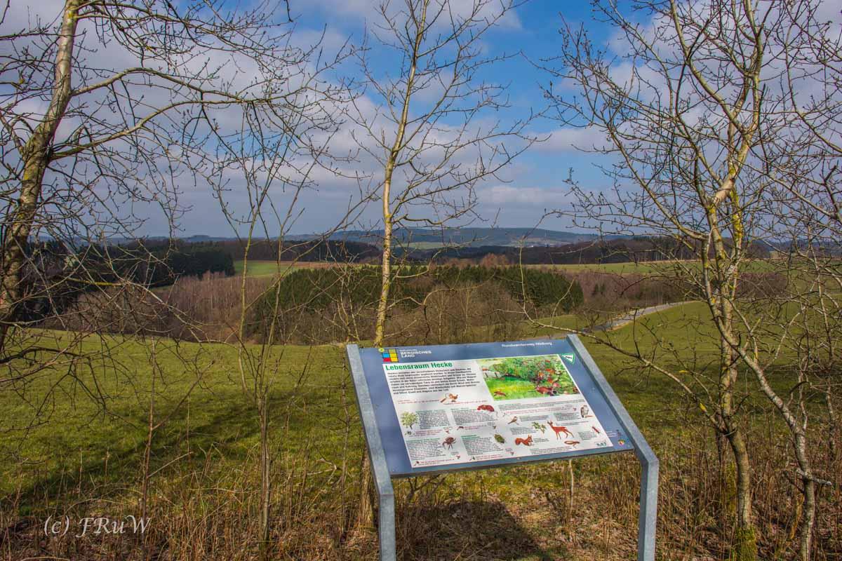 Wildenburger Land (47)
