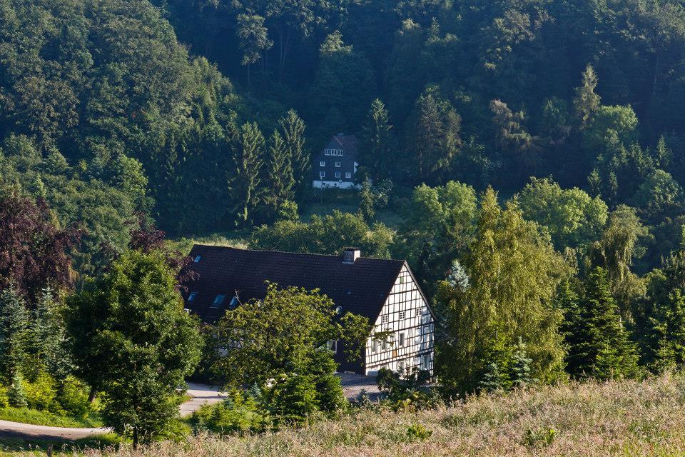 RainerElfringhauserSchweiz (1)